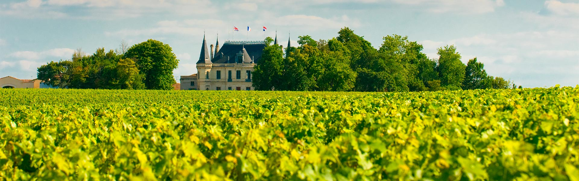 Los châteaux del Médoc